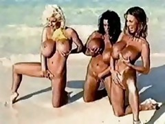 Huge tits beach day