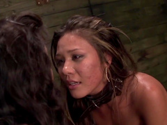 Lesbian BDSM with three horny sluts