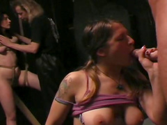 Ladies with lovely tits tied up