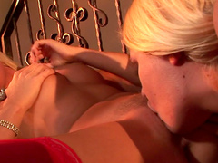 Diana Doll and Riley Evans are licking each other pusses