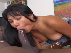 Ebony shaft slides into Asian vagina