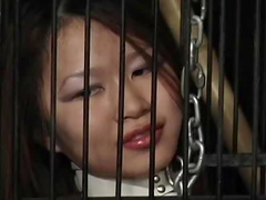 Collared Asian submissive put through bondage