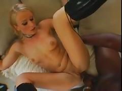 Czech Sharon Wild Anal