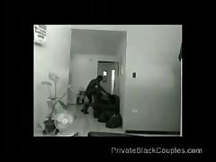jamacian spy cam
