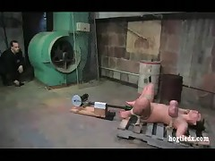 Trina Michaels hogtied machine toyed
