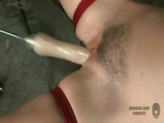 Sindee Jennings bondage