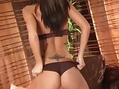 Babe in sheer lingerie teases -
