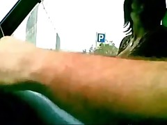 Italians ducks in a car