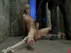 Blonde tied like hog rough bondage sex