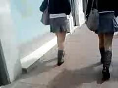 Ricas Parde Colegialas Caminando