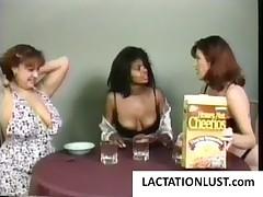 Two lactating chicks milking tits