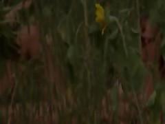 Outdoor czechian masturbation in fields