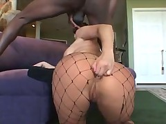 Big cock pounds fishnets slut in asshole