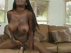 Vanessa Blue fucked in every hole as her big tits bounce