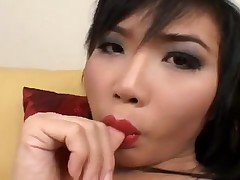 Nice Asian ladyboy jerking till cumshot