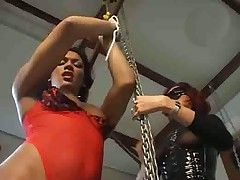 Shemale bdsm games