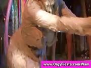 Wam chicks have dirty mud wrestling fight